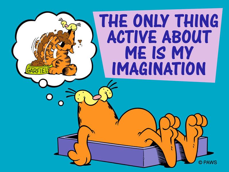 Las 10 Mejores Frases De Garfield Capítulo 2 Listame